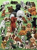 GIORDANO, CUTE ANIMALS, LUSTIGE TIERE, ANIMALITOS DIVERTIDOS, paintings+++++,USGI2920,#ac#, EVERYDAY