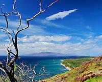 Pali trail at Olowalu, Maui, Hawaii.