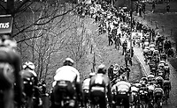 peloton during the 1st passage over the 'Haaghoek' cobbles. <br /> <br /> 74th Omloop Het Nieuwsblad 2019 (BEL)<br /> Gent – Ninove: 200km<br /> ©kramon