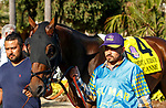 DEL MAR, CA  AUGUST 1: #4 Paige Anne, ridden by Flavien Prat, in the paddock before the Clement L. Hirsch Stakes (Grade 1) Breeders Cup Win and You're In Distaff Division on August 1, 2021 at Del Mar Thoroughbred Club in Del Mar, CA.