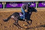 November 3, 2020: Outadore, trained by trainer Wesley A. Ward, exercises in preparation for the Breeders' Cup Juvenile Turf at Keeneland Racetrack in Lexington, Kentucky on November 3, 2020. John Voorhees/Eclipse Sportswire/Breeders Cup/CSM