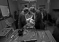 operazione chirurgica. Asportazione tumore, Ospedale di Cantu (Como), 1994