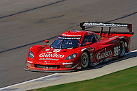 #99 GAINSCO/Bob Stallings Racing Corvette DP of Jon Fogarty & Alex Gurney class: Daytona Prototype (DP)