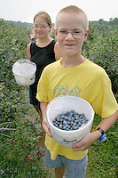 Teens picking blueberries South Haven Michigan