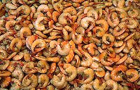 Abstract display of boiled shrimp. Louisiana.