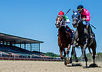 July 13, 2019 : Bronx Beauty #2, ridden by Jose Ortiz, re-rallies to win the Dashing Beauty Stakes on Delaware Handicap Day at Delaware Park in Stanton, Delaware. Scott Serio/Eclipse Sportswire/CSM