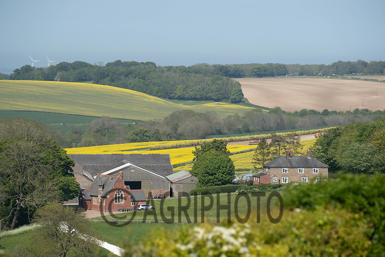 1.6-2021 Farmstead on the Lincolnshire Wolds <br /> ©Tim Scrivener Photographer 07850 303986<br />      ....Covering Agriculture In The UK....