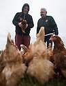 """25/03/16<br /> <br /> Zak Byra and Roger Hosking with the flock of free range hens.<br /> <br /> Full story here:  <br /> <br /> http://www.fstoppress.com/articles/happy-hens/<br /> .<br /> FARMER Roger Hosking doesn't believe there is such a thing as a bad egg, especially when he's talking about youngsters who have already made some bad choices in life.<br /> <br /> So it seems particularly fitting that this Easter, traditionally a time to celebrate new beginnings, he will spend time with disadvantaged kids, counting and grading more than 20,000 eggs each day as part of his unique """"farm school"""" philosophy.<br /> <br />  <br />  <br /> <br /> All Rights Reserved: F Stop Press Ltd. +44(0)1335 418365   www.fstoppress.com."""