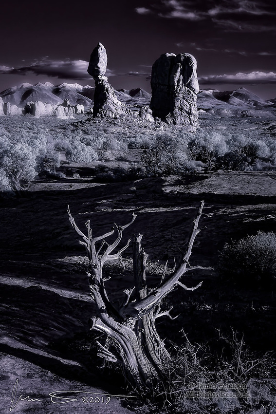 Juniper Skeleton with Balanced Rock, Utah (Infrared).  The Balanced Rock monument is one of the most photographed formations in Arches National Park, but it's not likely that you've seen it like this previously.  My infrared camera brings out the stark form of the deceased tree and highlights the early fall snow on the distant La Sal Mountains, and the sunset light sculpts the rocks nicely.<br /> <br /> Image ©2019 James D. Peterson