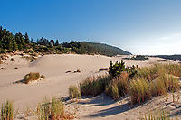Late summer at Umpqua Lighthouse and the Oregon Dunes National Park.