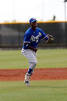 Juan Rivera  - Kansas City Royals - 2009 spring training.Photo by:  Bill Mitchell/Four Seam Images
