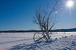 Idaho,Coeur d' Alene. Snow scene of irrigation lines on the Rathdrum Prairie in winter.