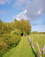 A rustic fence separates a woodland trail from the neighbouring field