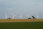 Europa, DEU, Deutschland, Nordrhein Westfalen, NRW, Rheinland, Niederrhein, Juelicher Boerde, Agrarlandschaft, Agrarwirtschaft, Windrotoren, Stromerzeugung, Windenergie, Traktor, Kategorien und Themen, Energie, Alternative Energie, Erneuerbare Energien, Oekologisch, Oekostrom, Strom, Stromerzeugung, Stromversorgung, Energieversorgung, Stromwirtschaft, Energieversorgung, Energiewirtschaft, Versorgung, Zukunft, Zukunftsenergien, Landwirtschaft, Agrarlandschaft, Agrar, Agrarwirtschaft, Anbau, Feld, Acker, Nutzpflanzen, Nutzpflanze......[Fuer die Nutzung gelten die jeweils gueltigen Allgemeinen Liefer-und Geschaeftsbedingungen. Nutzung nur gegen Verwendungsmeldung und Nachweis. Download der AGB unter http://www.image-box.com oder werden auf Anfrage zugesendet. Freigabe ist vorher erforderlich. Jede Nutzung des Fotos ist honorarpflichtig gemaess derzeit gueltiger MFM Liste - Kontakt, Uwe Schmid-Fotografie, Duisburg, Tel. (+49).2065.677997, schmid.uwe@onlinehome.de, www.image-box.com]