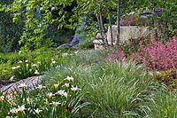 Calamagrostis foliosus, Mendocino Reed Grass with Iris 'Canyon Snow' and Heuchera 'Canyon Pink' Coral Bells; California native plants, Santa Barbara Botanic Garden