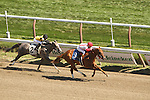 August 17, 2014:  Top Decile (Congrats x Sequoia Queen)with Rosie Napravnik win the Maiden 83,000 for 2-year old fillies, going 6 1/2 furlongs at Saratoga Racetrack. Trainer: Albet Stall Jr. Owner: Klaravich Stables, William H. Lawrence. Sue Kawczynski/ESW/CSM