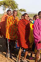Tanzania. Maasai Village of Ololosokwan, Northern Serengeti.  Male Villagers Performing Welcoming Dance.