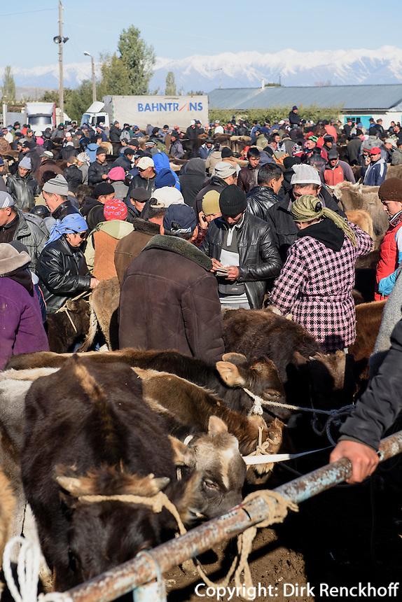 Viehmarkt in Karakol, Kirgistan, Asien<br /> cattle market in Karakol, Kirgistan, Asia