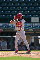 Palm Beach Cardinals Donivan Williams (25) bats during a game against the Bradenton Marauders on May 30, 2021 at LECOM Park in Bradenton, Florida.  (Mike Janes/Four Seam Images)