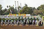 """ARCADIA, CA  SEPTEMBER 29: The start of the Zenyatta Stakes (Grade ll) """"Win and You're In Breeders' Cup Distaff Division, on September 29, 2019 at Santa Anita Park in Arcadia, CA.<br /> (Photo by Casey Phillips/Eclipse Sportswire/CSM"""