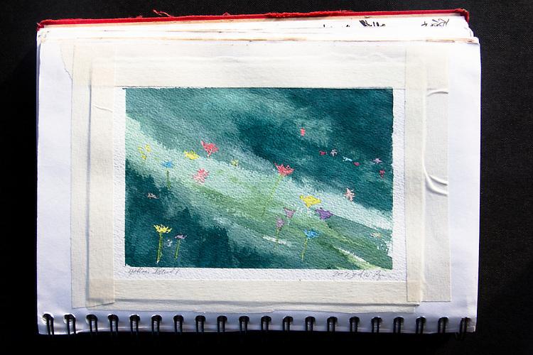 Wildflowers in Shade, Yellow Island, San Juan Islands, Journal Art 2009
