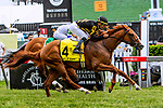 MAY 18, 2019 : English Bee, ridden by Jose Ortiz, wins the James W. Murphy Stakes at Pimlico Racecourse, on May 18, 2019 in Baltimore, MD.  Sue Kawczynski_ESW_CSM