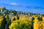 Fall color in the Missoula Valley and Lolo peak