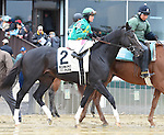 Scenes from around the track on Jockey Club Gold Cup Day on October 03, 2015 at Belmont Park in Elmont, New York.  (Bob Mayberger/Eclipse Sportswire)