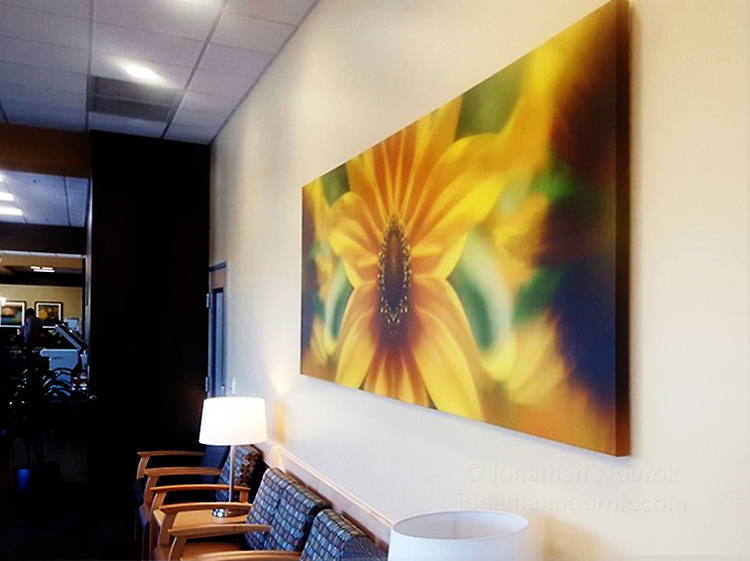A canvas print at a medical office in Northern California.