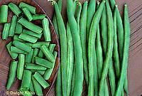 HS30-077x Bean - pole bean - Kentucky Blue variety