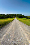 A gravel rural road through farmland in Lycoming County, Pennsylvania
