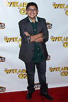 """HOLLYWOOD, CA - SEPTEMBER 18: """"The Wizard Of Oz"""" Opening Night held at the Pantages Theatre on September 18, 2013 in Hollywood, California. (Photo by Xavier Collin/Celebrity Monitor)"""