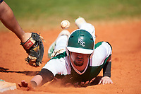 Farmingdale State Rams Anthony Gigante (4) dives back to first base on a pickoff attempt during the first game of a doubleheader against the FDU-Florham Devils on March 15, 2017 at Lake Myrtle Park in Auburndale, Florida.  Farmingdale defeated FDU-Florham 6-3.  (Mike Janes/Four Seam Images)