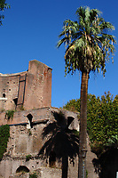 Rome, piazza Vittorio: A view of the ancient ruins in the garden that is located at the center of the square. There is a palm nearby and a street lamp in foreground, though small with respect to the frame. It was a sunny day at the beginning of the fall.