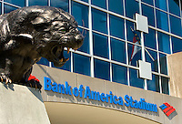 09/16/07 :  A panthers statue roars outside Bank of America stadium. ..The Carolina Panthers, professional American NFL football team that represents both North Carolina and South Carolina, is based in Charlotte, North Carolina. The Panthers began playing in 1995 as part of the National Football League?s expansion program. They are members of the National Football Conference (NFC) South Division. They play in the Bank of America Stadium, located in downtown Charlotte.
