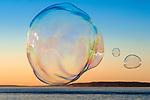 Soap Bubble Man And Soap Bubbles