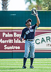 11 March 2014: New York Yankees outfielder Antoan Richardson in action during a Spring Training game against the Washington Nationals at Space Coast Stadium in Viera, Florida. The Nationals defeated the Yankees 3-2 in Grapefruit League play. Mandatory Credit: Ed Wolfstein Photo *** RAW (NEF) Image File Available ***