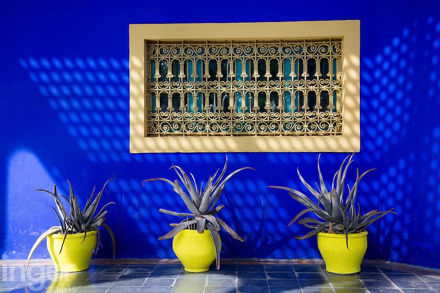 Yellow pots and cactus at the Majorelle Garden, Marrakech, Morocco