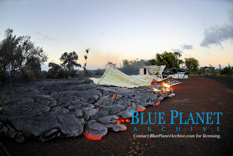 Lava flows through the remains of Gary Sleik's house, The water catchment tank is still full of water, Lava flow in the trees and a section of highway 137, Near Hawaii, USA Volcanoes National Park, Kalapana, Hawaii, USA, The Big Island of Hawaii, USA