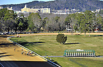 Jan.21, 2013 - Hot Springs, Arkansas, U.S - The field for the 6th race charges down the home stretch Saturday afternoon at Oaklawn Park.  (Credit Image: © Jimmy Jones/Eclipse/ZUMAPRESS.com)