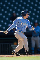North Carolina Tar Heels pinch hitter Tom Zengel #19 follows through on his swing against the California Golden Bears in the NCAA baseball game on March 2nd, 2013 at Minute Maid Park in Houston, Texas. North Carolina defeated Cal 11-5. (Andrew Woolley/Four Seam Images).