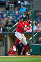 Worcester Red Sox Chris Herrmann (18) bats during a game against the Rochester Red Wings on September 3, 2021 at Frontier Field in Rochester, New York.  (Mike Janes/Four Seam Images)