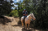 A horse and rider encountered along the Chabot to Garin Regional Trail at Cull Canyon Regional Park.