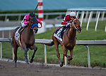 HALLANDALE BEACH, FL - JANUARY 27: Gun Runner #10, with Florent Geroux riding, wins the Pegasus World Cup Invitational Stakes Race on Pegasus World Cup Invitational Day at Gulfstream Park Race Track on January 27, 2018 in Hallandale Beach, Florida. (Photo by Bob Aaron/Eclipse Sportswire/Getty Images)