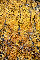 Yellow crust (close-up) on ash plain, Yasur Volcano, Sulphur Bay, Tanna Island, Vanuatu