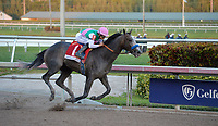 HALLANDALE, FL - JANUARY 28: Jockey Mike Smith celebrates atop Arrogate after winning The Inaugural $12 Million Pegasus World Cup Invitational, The World's Richest Thoroughbred Horse Race at Gulfstream Park on January 28, 2017 in Hallandale, Florida <br /> <br /> People:  Arrogate