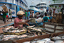 15/09/15<br /> <br /> Fishermen sell their catch of giant catfish and other fish from the Amazon river at the docks in Santarem, Brazil. <br /> <br /> All Rights Reserved: F Stop Press Ltd. +44(0)1335 418365   +44 (0)7765 242650 www.fstoppress.com