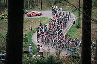 peloton up the Col du Rosier<br /> <br /> 104th Liège - Bastogne - Liège 2018 (1.UWT)<br /> 1 Day Race: Liège - Ans (258km)
