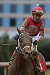 January 23, 2021: Night Ops (1) with jockey Martin Garcia aboard after the running of the Fifth Season Stakes at Oaklawn Racing Casino Resort in Hot Springs, Arkansas on January 22, 2021. Justin Manning/Eclipse Sportswire/CSM