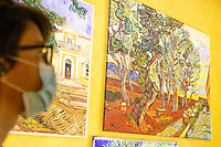 """LISBON, PORTUGAL - MAY 31: A visitor attends the """"Meet VicentVanGogh"""" exhibition as the spread of the (COVID-19) continues in Lisbon, on May 31, 2020. <br /> Meet Vincent van Gogh is an interactive experience, to get to know Lisbon, through which it proposes to make Vincent's art accessible to as many people as possible.<br /> (Photo by Luis Boza/VIEWpress via Getty Images)"""